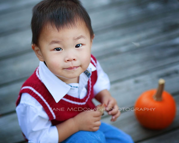 Acton MA toddler portrait
