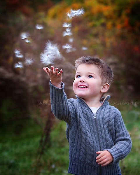 Boy and dandelion seeds